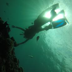 [日本/沖繩] 潛水浮潛必到 青之洞窟探險 沖繩本島特色潛點