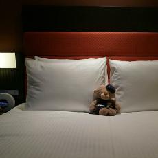 大阪酒店 - 大阪難波假日酒店 Holiday Inn Osaka Namba (道頓堀)
