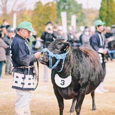 三重縣   松阪牛祭 · 日本三大和牛之一熱鬧祭典BBQ