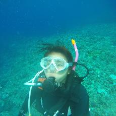 [日本/沖繩] 來沖繩狂浮潛潛水!透明度20米高之慶良間諸島